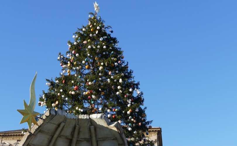 Vatican_Christmas_tree__entire__2017_810_500_55_s_c1.jpg