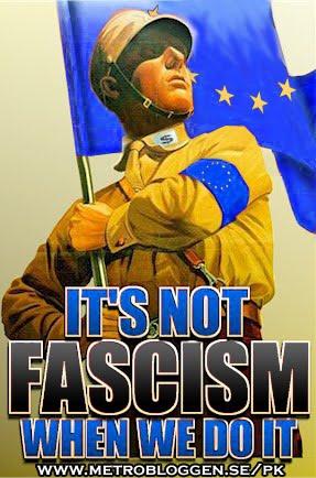eu_fascism_sweden.jpg