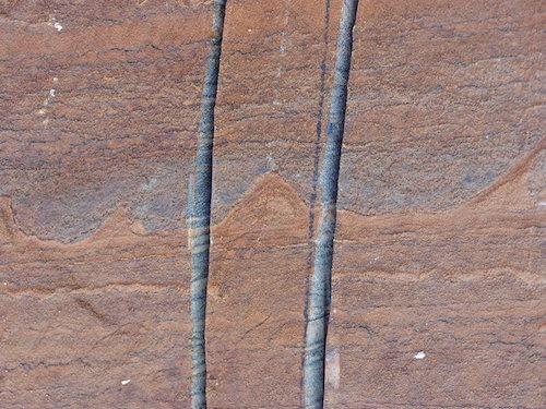 stromatolites_01FoSSIL1_master768_sm.jpg