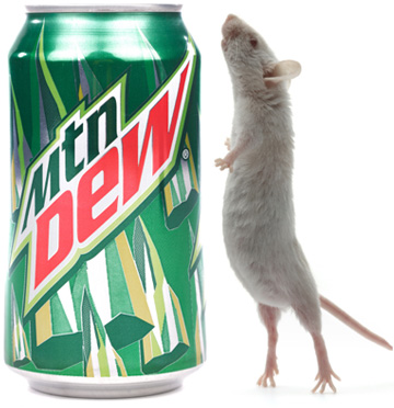 mountain_dew_mouse.jpg