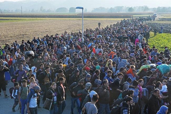 migrantes_Eslove__769_nia_3595_min_b.jpg
